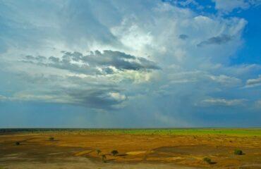 Waza National Park plains